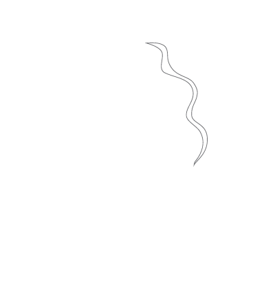 Cafe Mona Mexican Cuisine